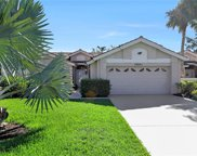 28861 Marsh Elder Ct, Bonita Springs image