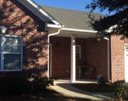 6025 Banded Tulip Drive, Wilmington image