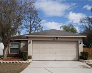 4620 S Country Hills Court, Plant City image