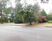NW MICHELBOOK  LN, McMinnville image