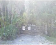 16649 N 95th Ave N, Jupiter image