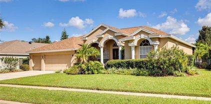 4383 Rutledge Drive, Palm Harbor