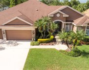 10563 Greencrest Drive, Tampa image