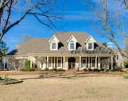 10280 Buckland Bluff, Collierville image