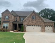 734 Kathy Dianne  Drive, Indian Land image