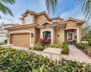9921 Sago Point Drive, Seminole image