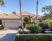 133 Hawksbill Way, Jupiter image