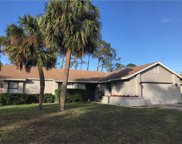 9127 Sabal Palm Circle, Windermere image