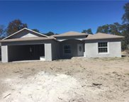 161 Willow Drive, Poinciana image