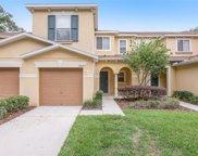 10819 Great Carlisle Court, Riverview image