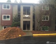 15707 4th Ave S Unit 24, Burien image
