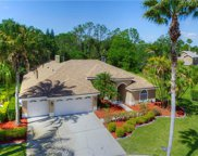 11801 Middlebury Drive, Tampa image