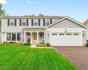 318 Meadow Green Drive, Naperville image