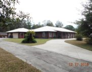 2465 Whooping Crane Drive, Deleon Springs image