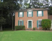 214 Dry Creek Pointe Ct, Goodlettsville image