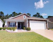725 Old Castle Loop, Myrtle Beach image