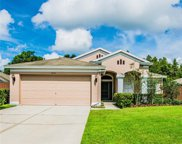 2101 Shelbourne Court, Wesley Chapel image