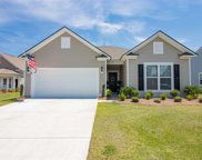 433 Black Cherry Way, Conway image