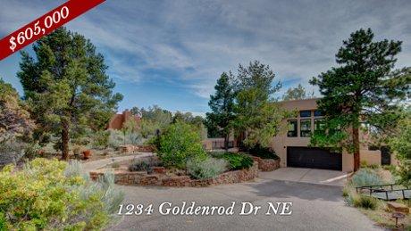 1234 Goldenrod Drive NE