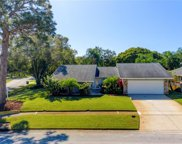 2891 Sweetgum Way S, Clearwater image
