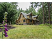 42263 CEDAR HOLLOW  RD, Port Orford image