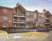 17950 Settlers Pond Way Unit 1A, Orland Park image