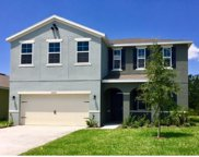 16523 Centipede Street, Clermont image