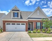 414  Brier Knob Drive, Fort Mill image