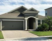 15871 Citrus Grove Loop, Winter Garden image