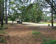 LOT 41 NATURES VIEW CIRCLE, Pawleys Island image