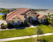 11816 Shire Wycliffe Court, Tampa image