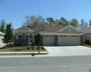 9240 Edistro Place, New Port Richey image