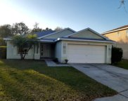 11831 Autumn Creek Drive, Riverview image