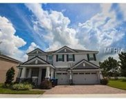 7629 Carlow Court, Windermere image