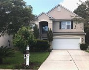 408 Blackberry Lane, Myrtle Beach image