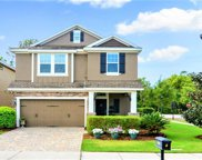16405 Egret Crossing Lane, Lithia image