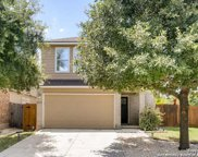 11123 Catchfly Field, Helotes image