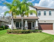 10702 Pegasus Valley Court, Tampa image