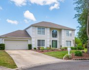 12347 HICKORY TREE CT, Jacksonville image