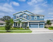14210 Quintessa Lane, Lithia image