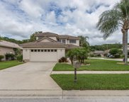 4393 Water Oak Way, Palm Harbor image