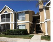 9481 Highland Oak Drive Unit 803, Tampa image