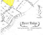 Whitetail Lot 14 Road, New Lebanon image