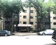 515 West Wrightwood Avenue Unit 505, Chicago image