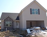 4620 Springstead Trail, Antioch image