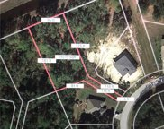 1419 Teal Court, Poinciana image