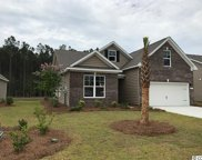 117 Laurel Hill Place, Murrells Inlet image