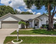 1616 Powder Ridge Drive, Valrico image
