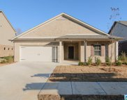 5153 Sterling Glen Dr, Clay image