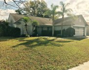 2608 Amberly Place, Seffner image